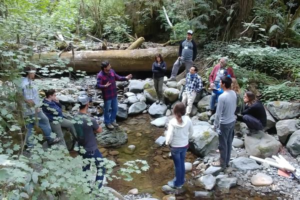 Field Tour - Mill Creek Fish Passage Project in Jedediah Smith Redwoods State Park